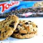 Product of the day: The Toddy Cookie